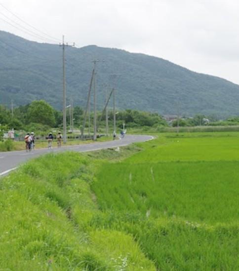 筑波山麓は日本のブルゴーニュ?