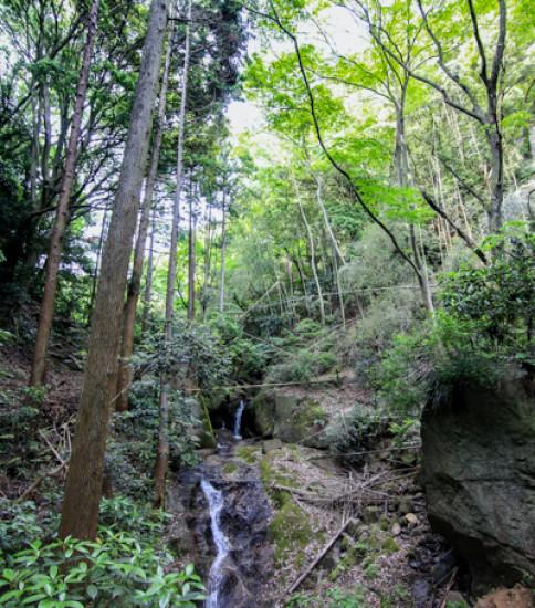 新緑の季節にオススメ!マイナスイオンたっぷり「六所の滝」