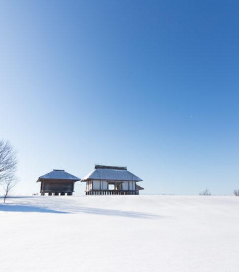 平沢官衙遺跡の雪景色