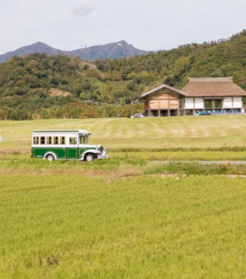 筑波山麓秋祭り2019が始まりました!