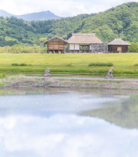 「筑波山麓りんりんツアー」の再開について