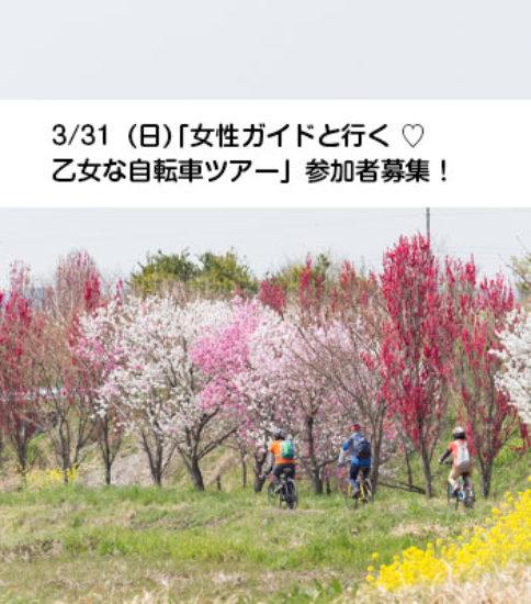 3/31(日)「女性ガイドと行く💕乙女な自転車ツアー」参加者募集🌸