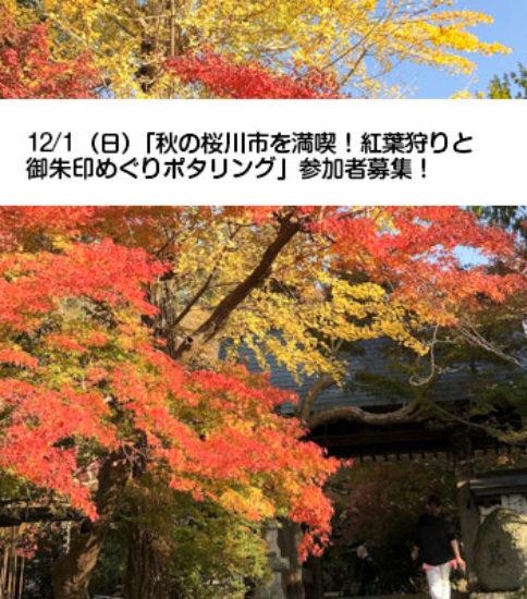 12/1(日)「秋の桜川市を満喫!紅葉狩りと御朱印めぐりポタリング」参加者募集!